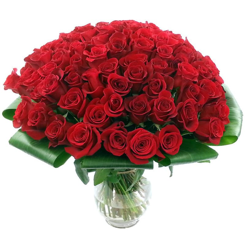 100 red roses flower delivery in the uk by clare florist. Black Bedroom Furniture Sets. Home Design Ideas