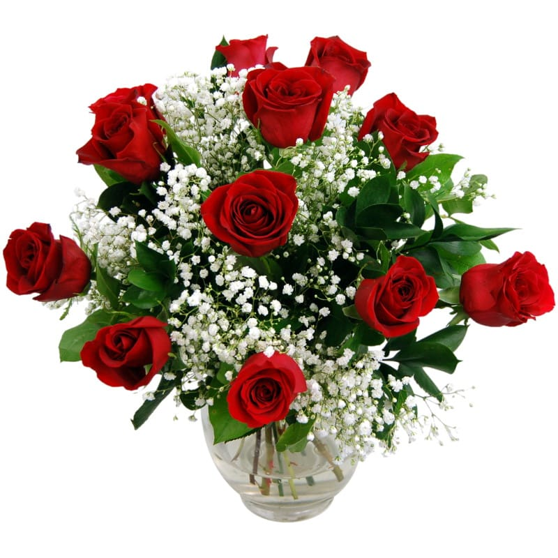 12 Luxury Red Roses half price special offer on subscriptions.