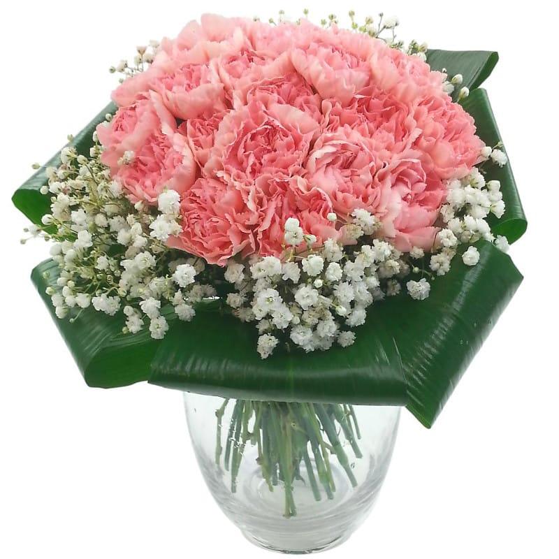 2 Dozen Pink Carnations Fresh Flower Bouquet 24 Pink Carnation