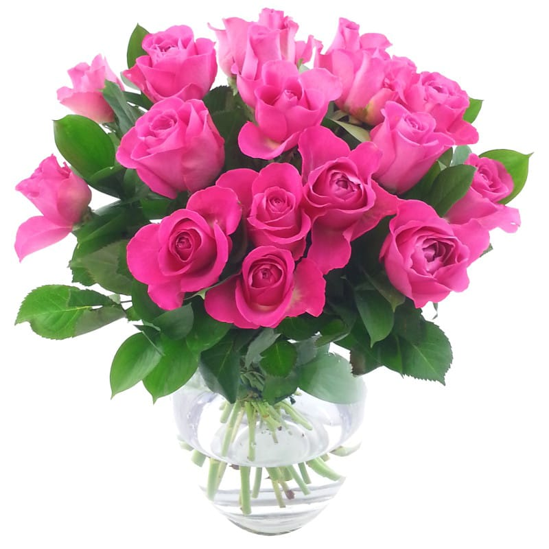 20 Pink Roses Bouquet