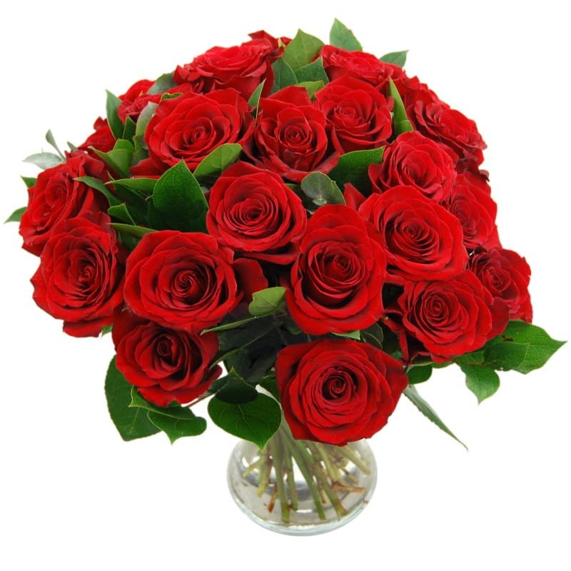 24 red roses flower bouquet valentines by clare florist