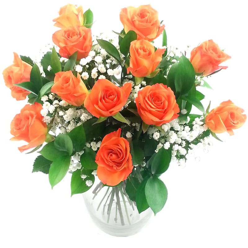 Assez Send Dozen Orange Roses for UK flower delivery from Clare Florist. JU17