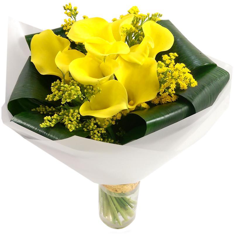 La La Yellow Calla Lilies