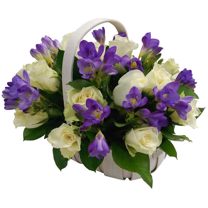 SAME DAY FLOWER DELIVERY MANILA, SEND GIFTS & FLOWERS TO PHILIPPINES, FREE DELIVERY. Send Gifts To philippies. filipino Gifts. Sending gifts to philippines are very easy with occasianal Gifts in philippines We Gifts offer a variety of gifts for delivery in manila & philippines.