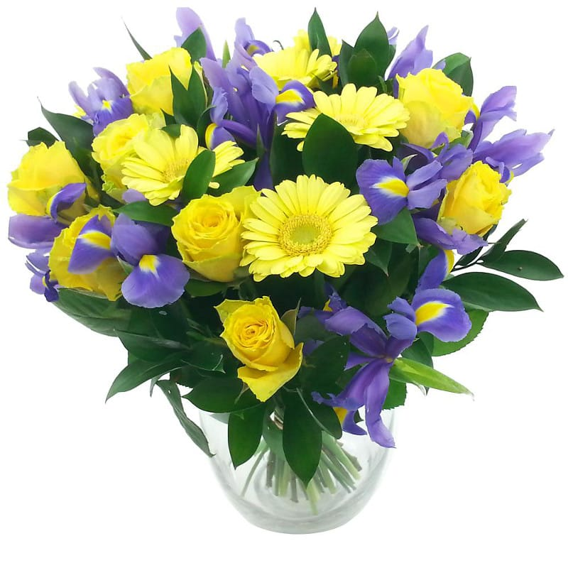 birth flowers  birthday flower meanings  clare florist, Beautiful flower