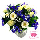Baby Boy Flowers with PiggyBankKids