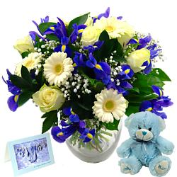 Gift   Baby  on Flower Gift Offers   Order   Send Online   Clare Florist
