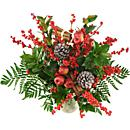 ilex 
