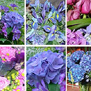 Blue Flower Collection – fresh flowers for UK delivery by post – bouquets and arrangements from Clare Florist