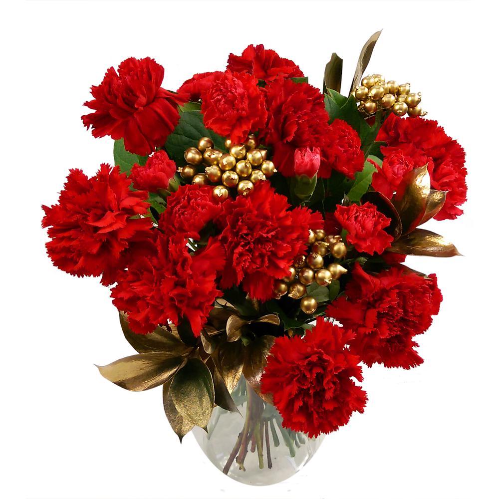 Carnation sparkle fresh flower bouquet festive red carnations and carnation sparkle izmirmasajfo