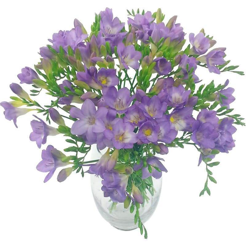 Lilac Charm 40 Freesia Bouquet