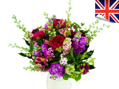 British Bold and Beautiful