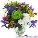 Colostomy Association Charity Bouquet