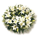 Lily Wreath – fresh flowers for UK delivery by post – bouquets and arrangements from Clare Florist