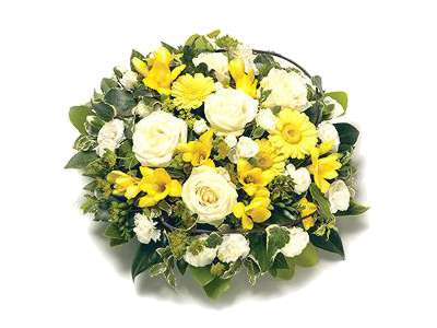Yellow and White Posy half price special offer on subscriptions.