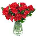 Festive Red Carnations