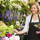 Florist Select – fresh flowers for UK delivery by post – bouquets and arrangements from Clare Florist