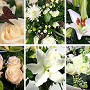 White Flower Collection – fresh flowers for UK delivery by post – bouquets and arrangements from Clare Florist