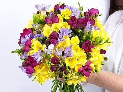 Freesia Fragrance Bouquet