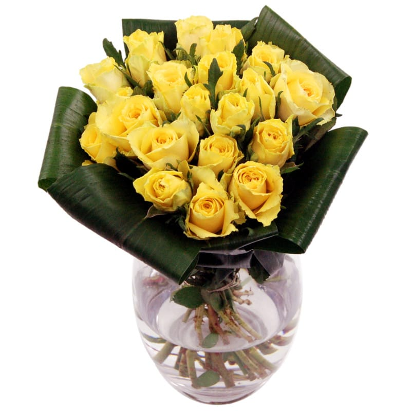 Friendship - Yellow Roses