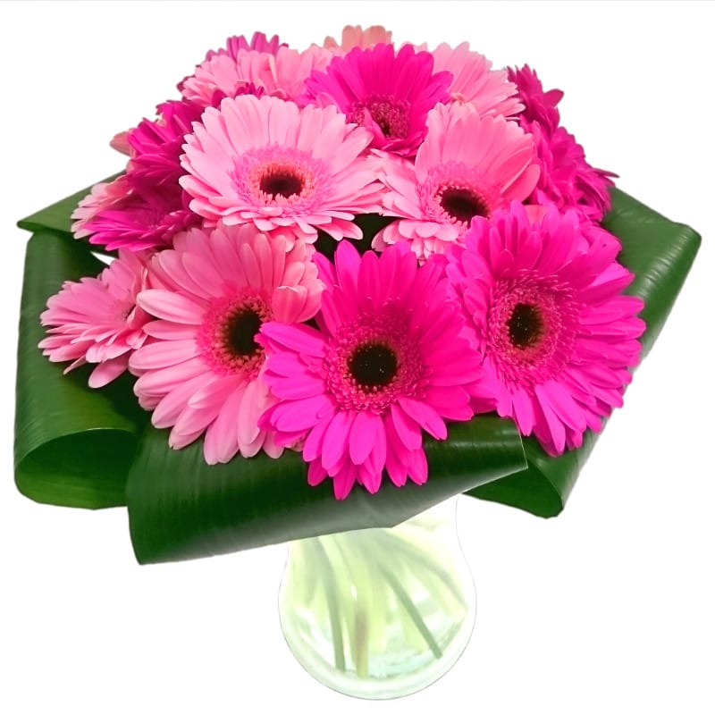 gerbera gem bouquet fresh flowers free uk delivery. Black Bedroom Furniture Sets. Home Design Ideas
