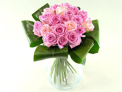 Grace Pink Roses