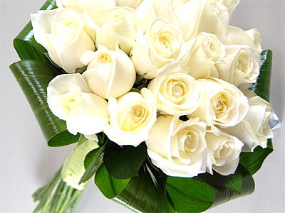 Innocence white roses fresh flower bouquet 20 premium white roses innocence white roses fresh flower bouquet 20 premium white roses delivered next day mightylinksfo