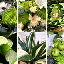 Lime Flower Collection – fresh flowers for UK delivery by post – bouquets and arrangements from Clare Florist