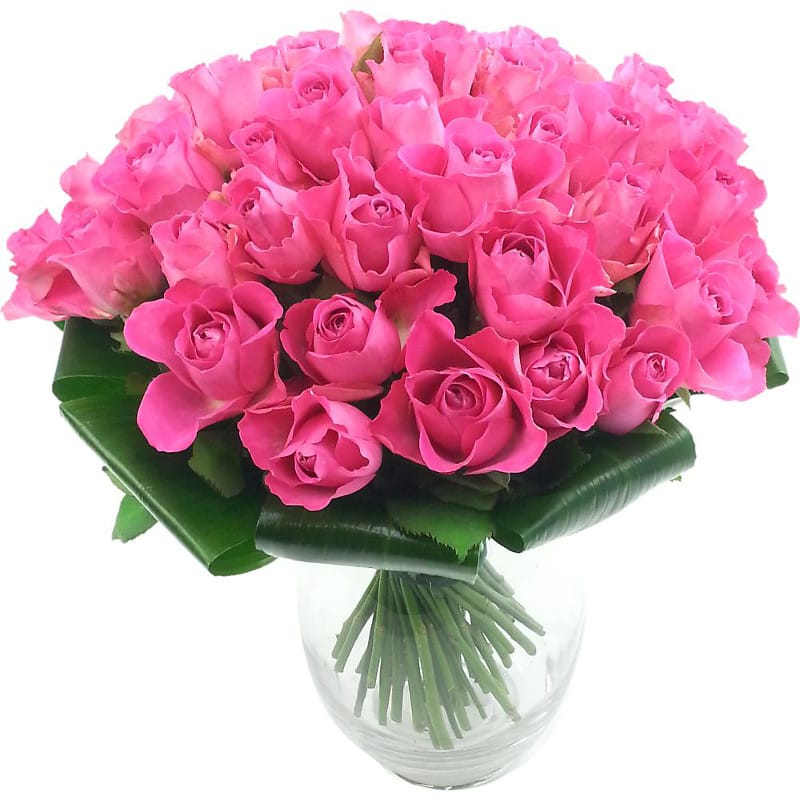 Luxury 50 Pink Roses Bouquet half price special offer on subscriptions.