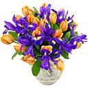 orange tulips tulips iris purple iris