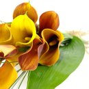 mango calla lilies bouquet