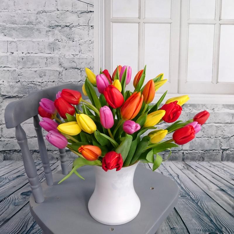 Mixed Tulips