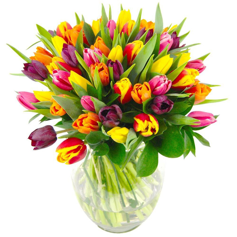 mixed tulips flower bouquet