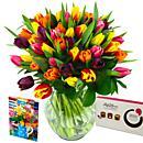 Mixed Tulips Gift Set