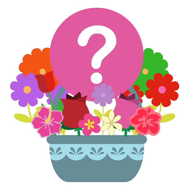 Mystery Flower Basket