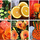 Orange Flower Collection – fresh flowers for UK delivery by post – bouquets and arrangements from Clare Florist