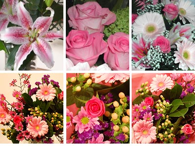 Pink flower collection fresh flowers free uk delivery pink flower collection mightylinksfo