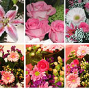 Pink Flower Collection – fresh flowers for UK delivery by post – bouquets and arrangements from Clare Florist