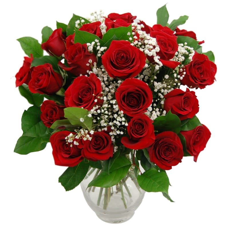 Promise - 24 Red Roses half price special offer on subscriptions.