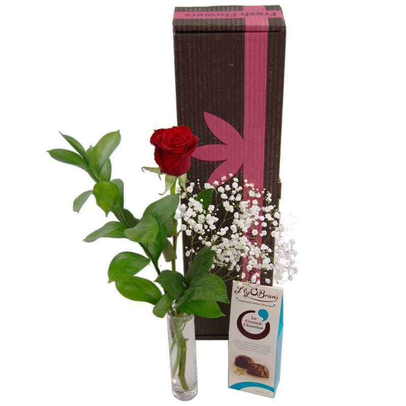 Single red rose gift set fresh flowers free uk delivery single red rose gift set negle Choice Image