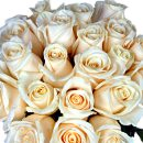 20 White Roses – fresh flowers for UK delivery by post – bouquets and arrangements from Clare Florist