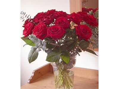 Deluxe Dozen Red Roses