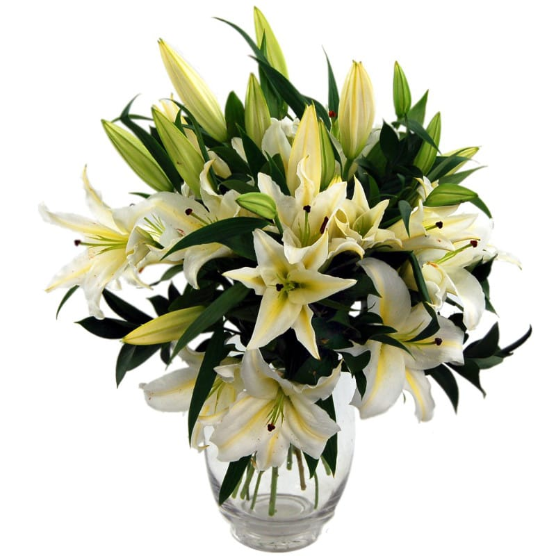 simple lilies flower bouquet