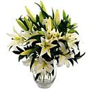 Simply Lilies – fresh flowers for UK delivery by post – bouquets and arrangements from Clare Florist