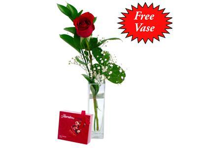 single red rose clare florist