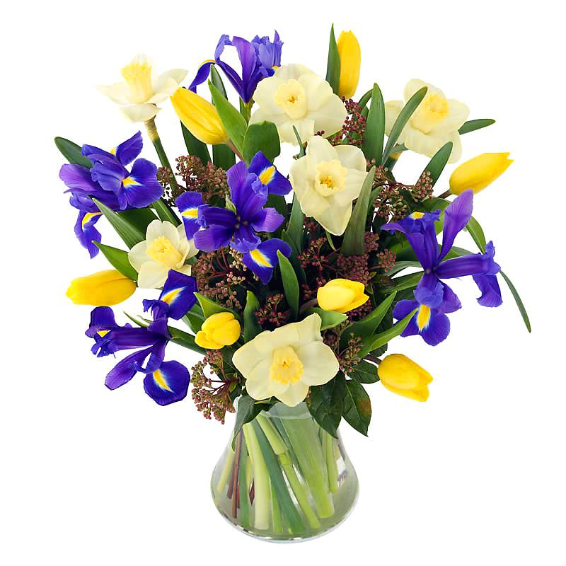 Spring Has Sprung Bouquet half price special offer on subscriptions.
