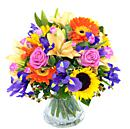 A full view of the Burst of Summer Bouquet, an arrangement of fresh flowers available now for next-day free delivery from Clare Florist