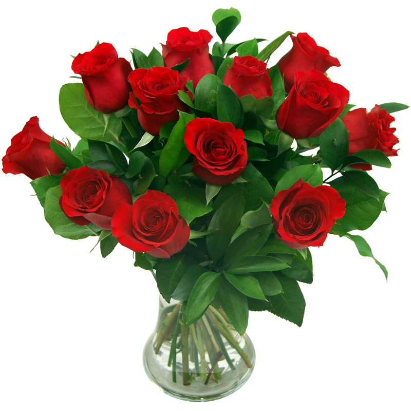 True Romance 12 red roses valentines day bouquet