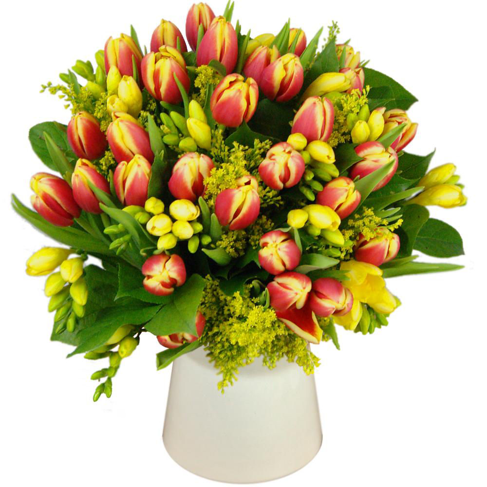Tulip and Freesia Bouquet