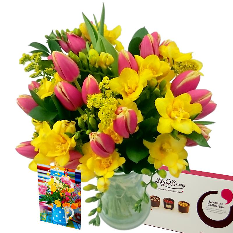 Tulip and Freesia Gift Set half price special offer on subscriptions.